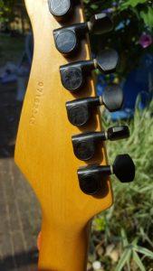 Detour guitar pegs